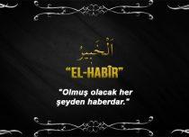 Allah (cc)'nun El Habîr Sıfatı
