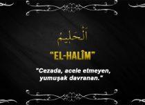 Allah(cc)'nun El Halîm Sıfatı