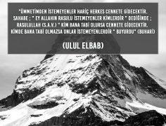 ULUL ELBAB (15)