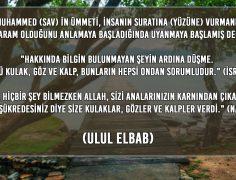 ULUL ELBAB (18)