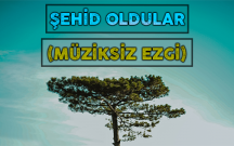 ŞEHİD OLDULAR (MÜZİKSİZ EZGİ)