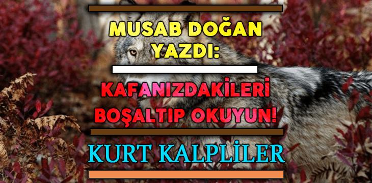 KURT KALPLİLER