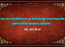 ÖZLÜ SÖZLER (89)