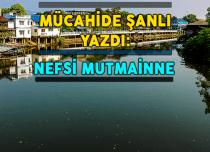 NEFSİ MUTMAİNNE