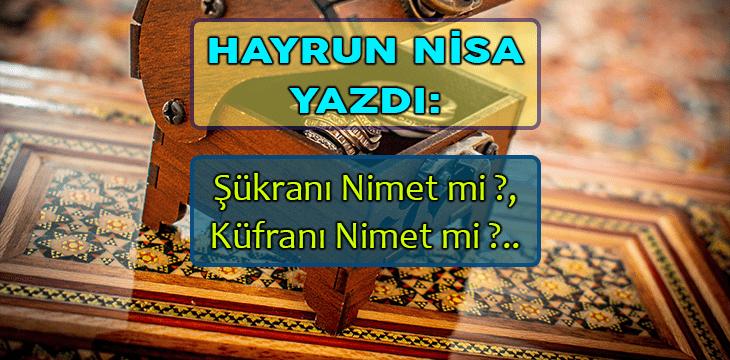 Şükranı Nimet mi ?, Küfranı Nimet mi ?..