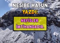 NEFİSLER İMTİHANDADIR