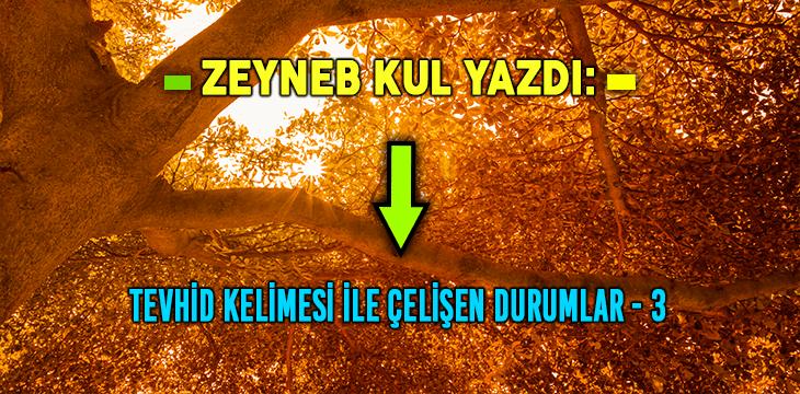 TEVHİD KELİMESİ İLE ÇELİŞEN DURUMLAR -3