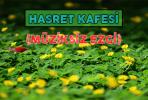 HASRET KAFESİ (MÜZİKSİZ EZGİ)