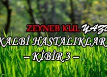 KALBİ HASTALIKLAR -KİBİR 3-