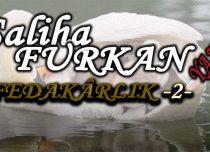 FEDAKARLIK -2-