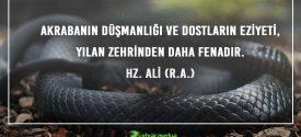 ÖZLÜ SÖZLER (284)