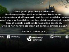 ÖZLÜ SÖZLER (395)