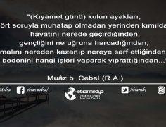 ÖZLÜ SÖZLER (414)