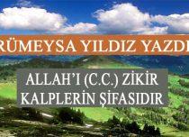 ALLAH'I (C.C.) ZİKİR KALPLERİN ŞİFASIDIR