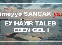 EY HAYIR TALEB EDEN GEL!